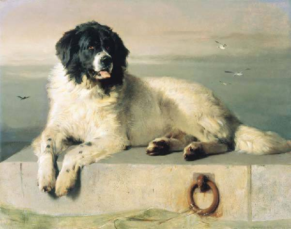 A Distinguished Member of the Humane Society, Sir E.Landseer